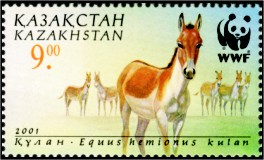 Stamp of Kazakhstan 348.jpg
