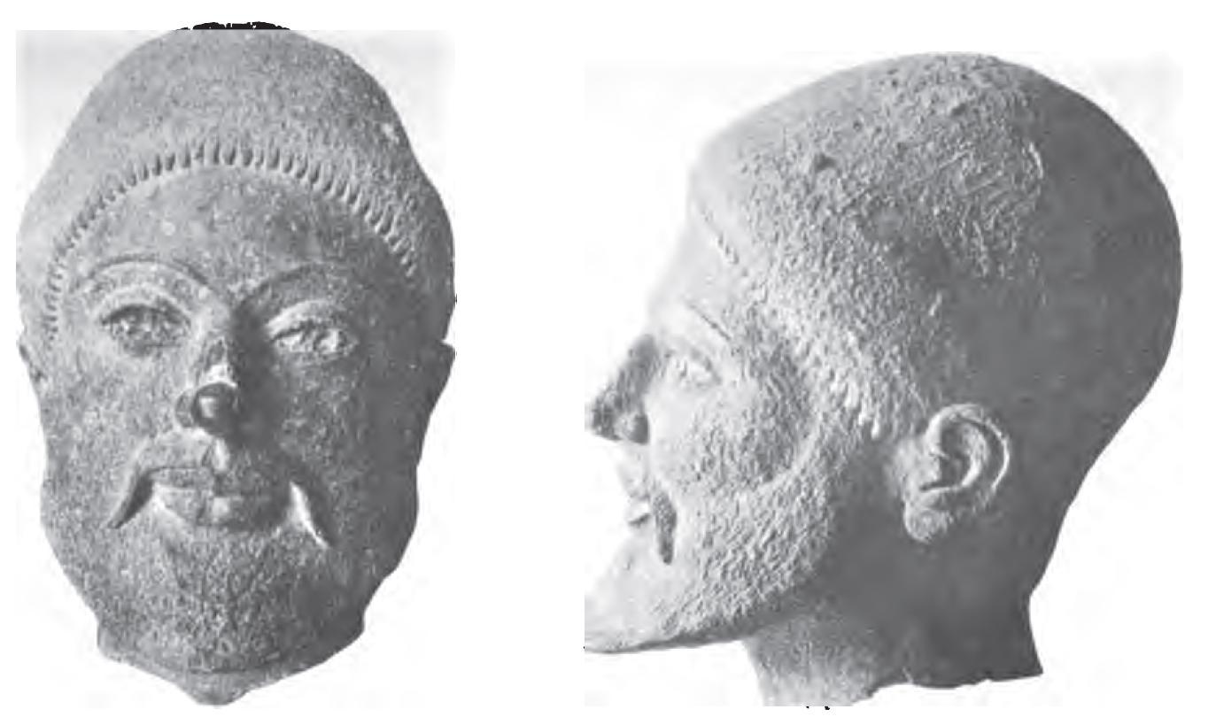 Bearded bronze head