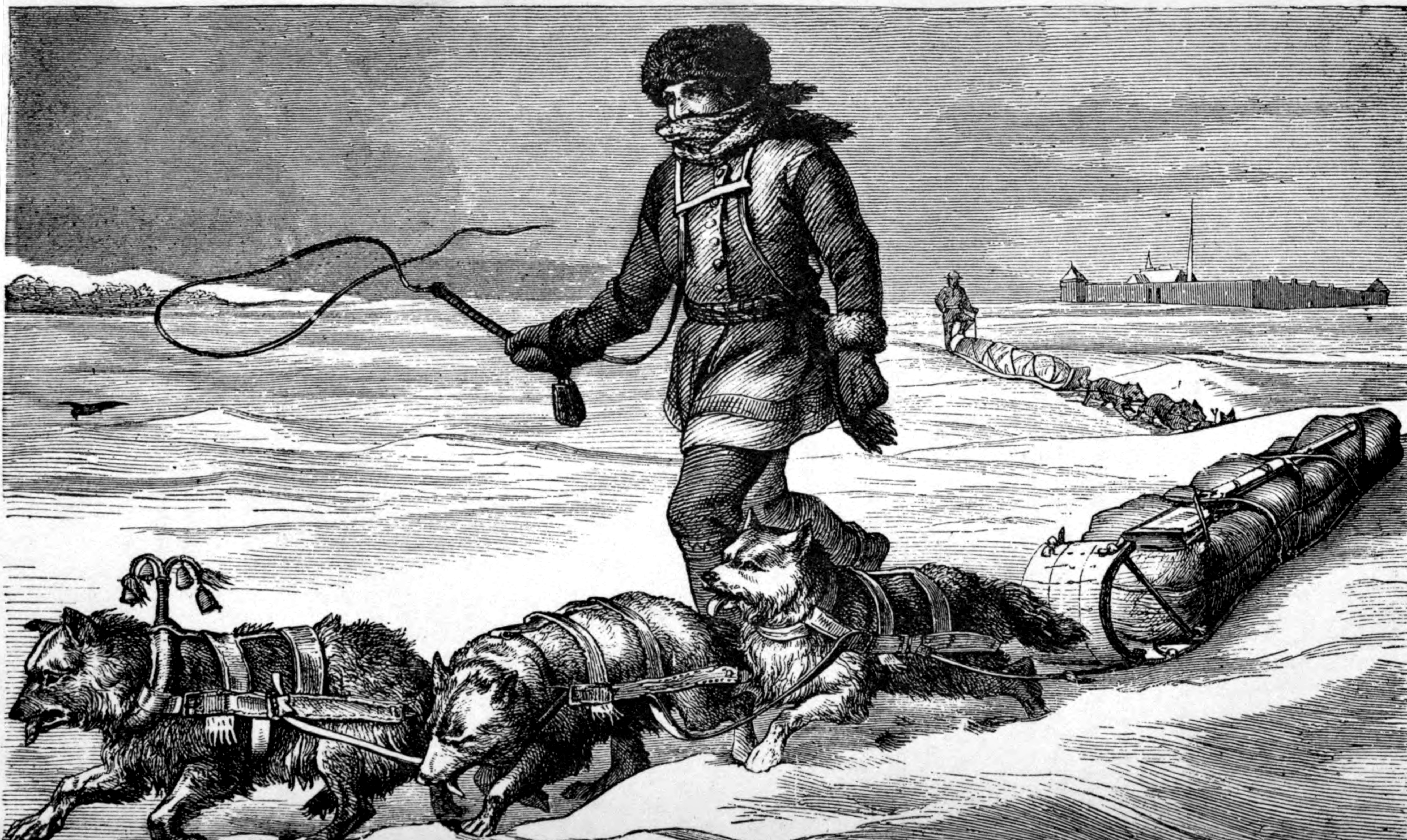 the winter wilderness companion traditional and native american skills for the undiscovered season