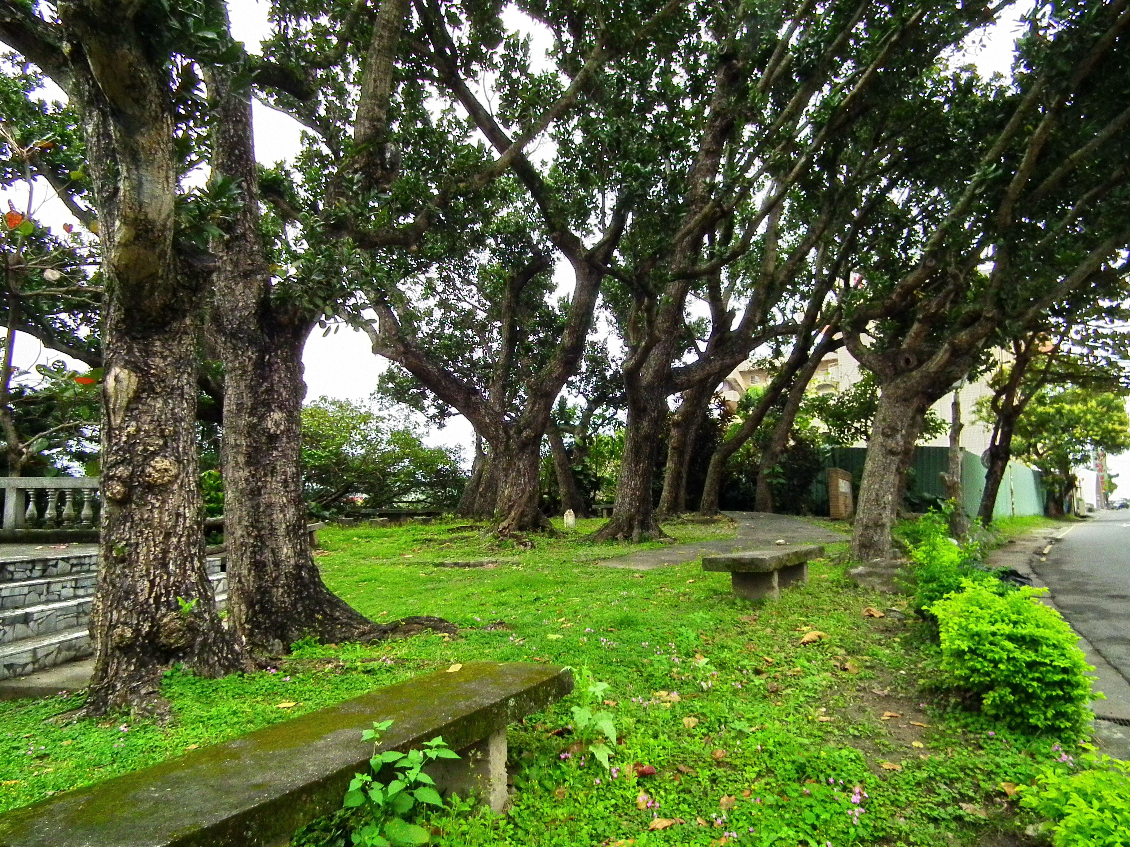 花崗街小公園 Small Park on Huagang Street - panoramio.jpg