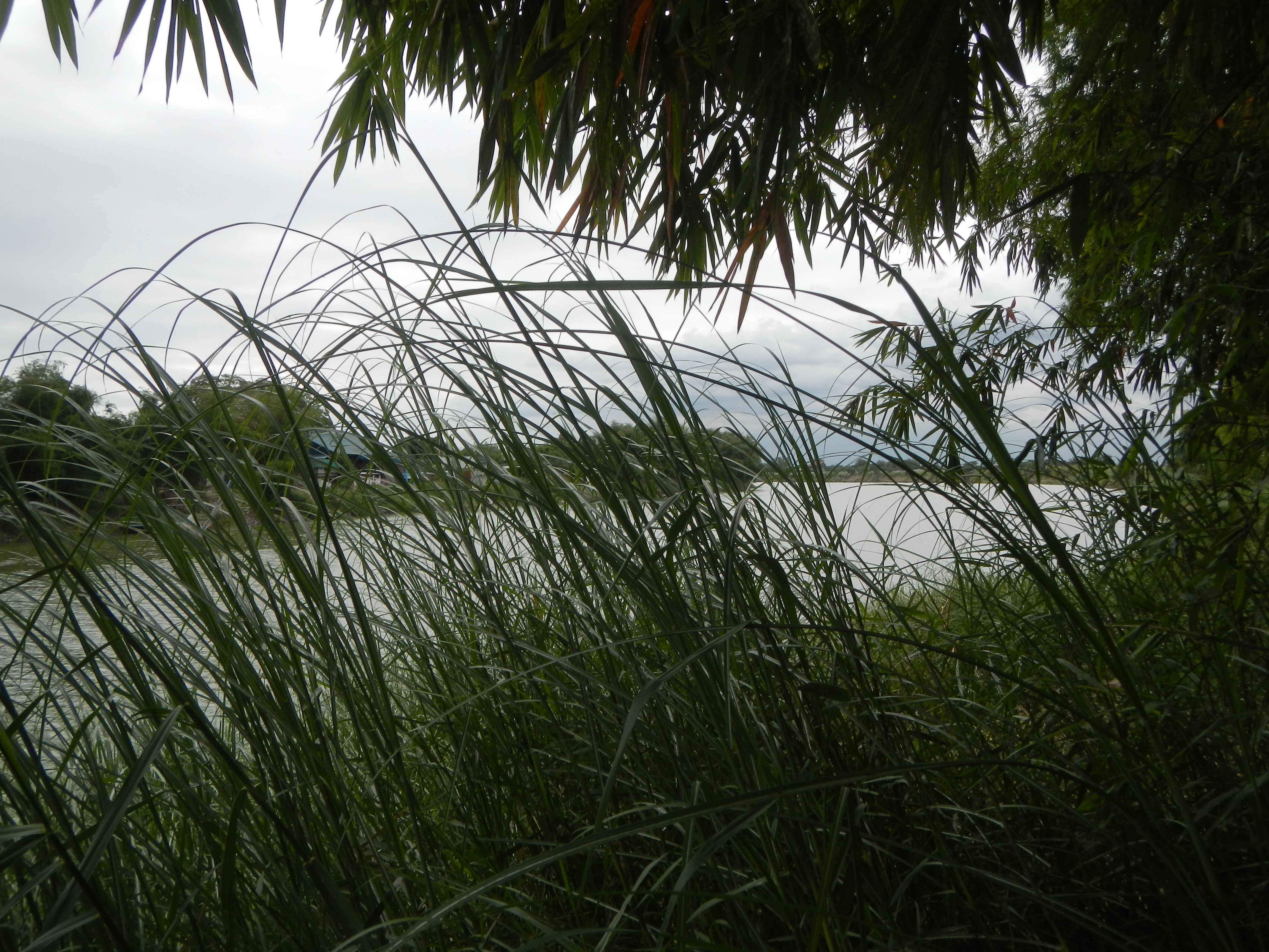 catalina cruz. фото