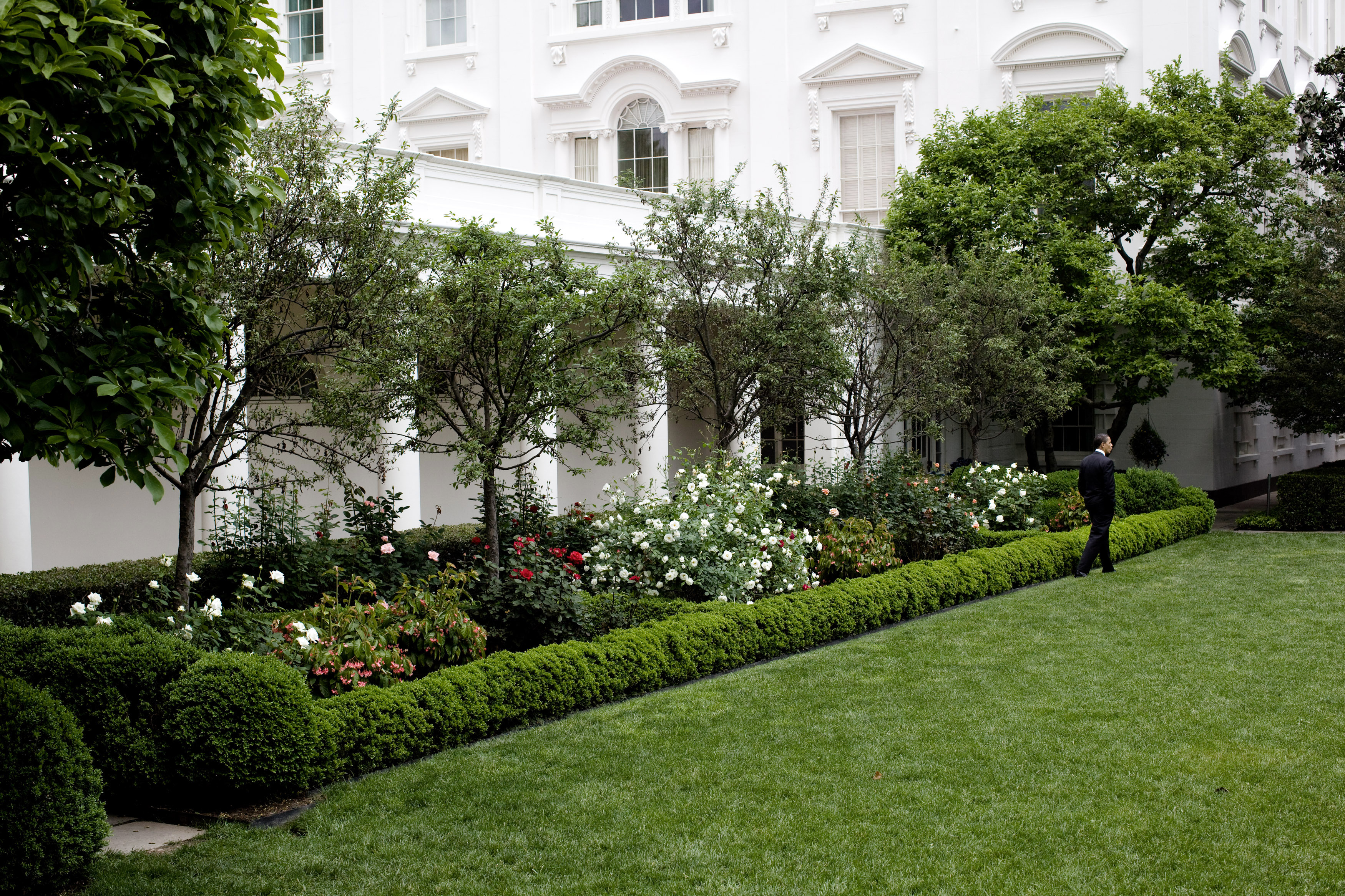 FileBarack Obama takes a stroll through the White House
