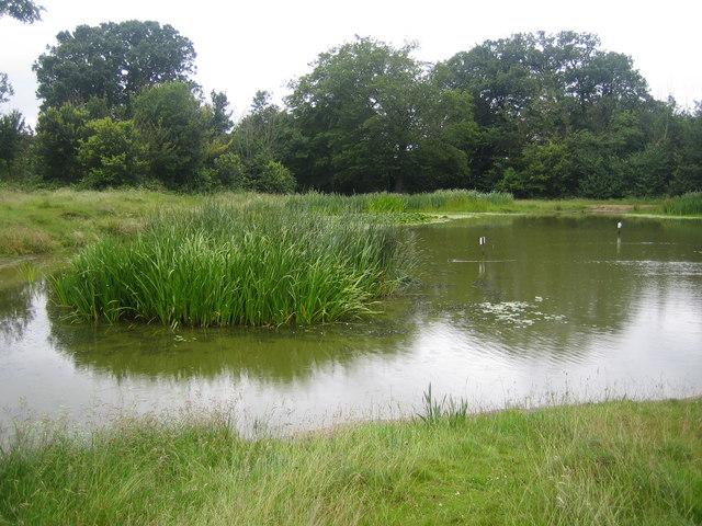 Barn Hill pond - geograph.org.uk - 476223