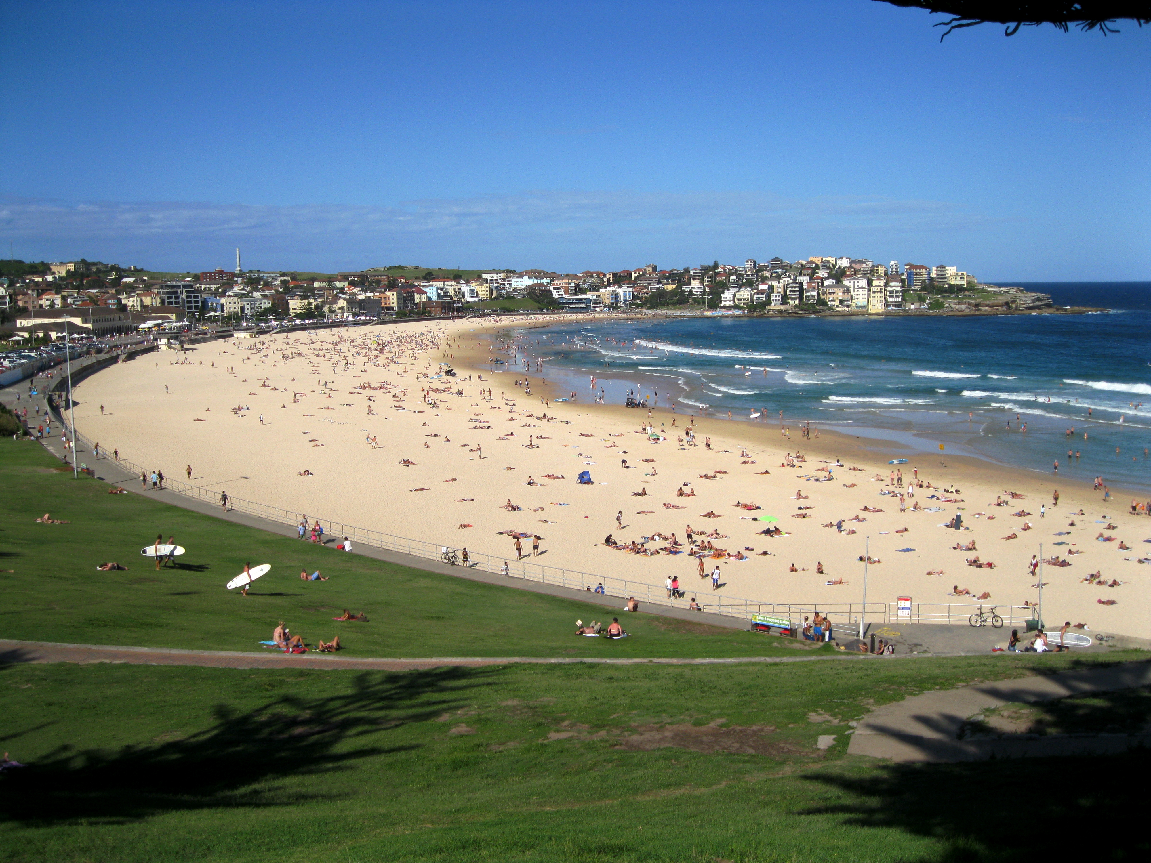 Bondi Beach Things to do in Sydney