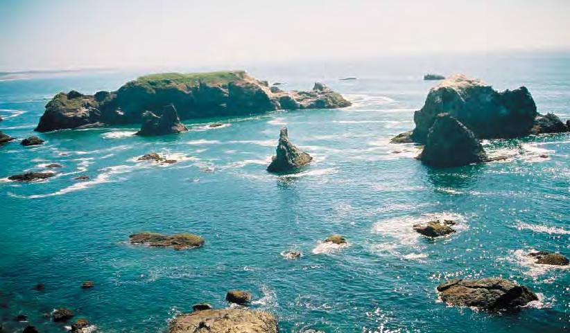 Http En Wikipedia Org Wiki File California Coastal Nm Jpg