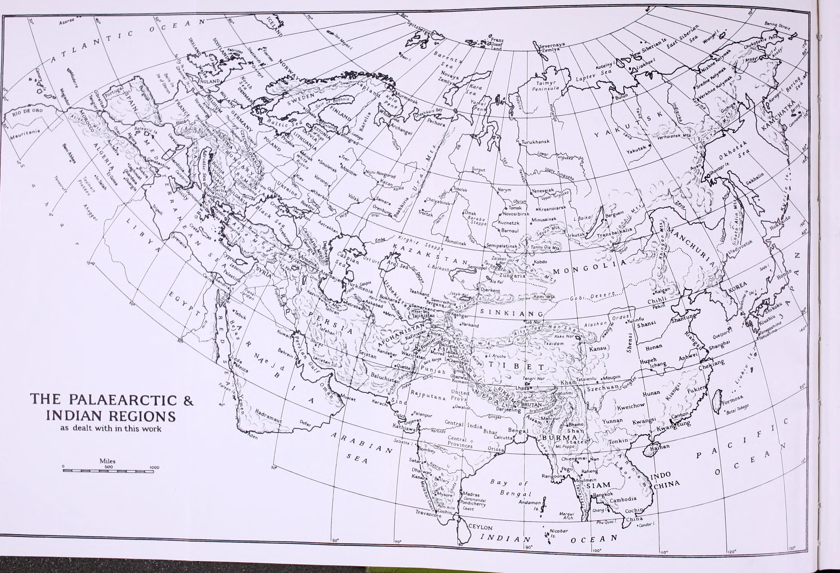bcca48224b68 File Checklist of Palaearctic and Indian mammals 1758 to 1946 BHL8727655.jpg