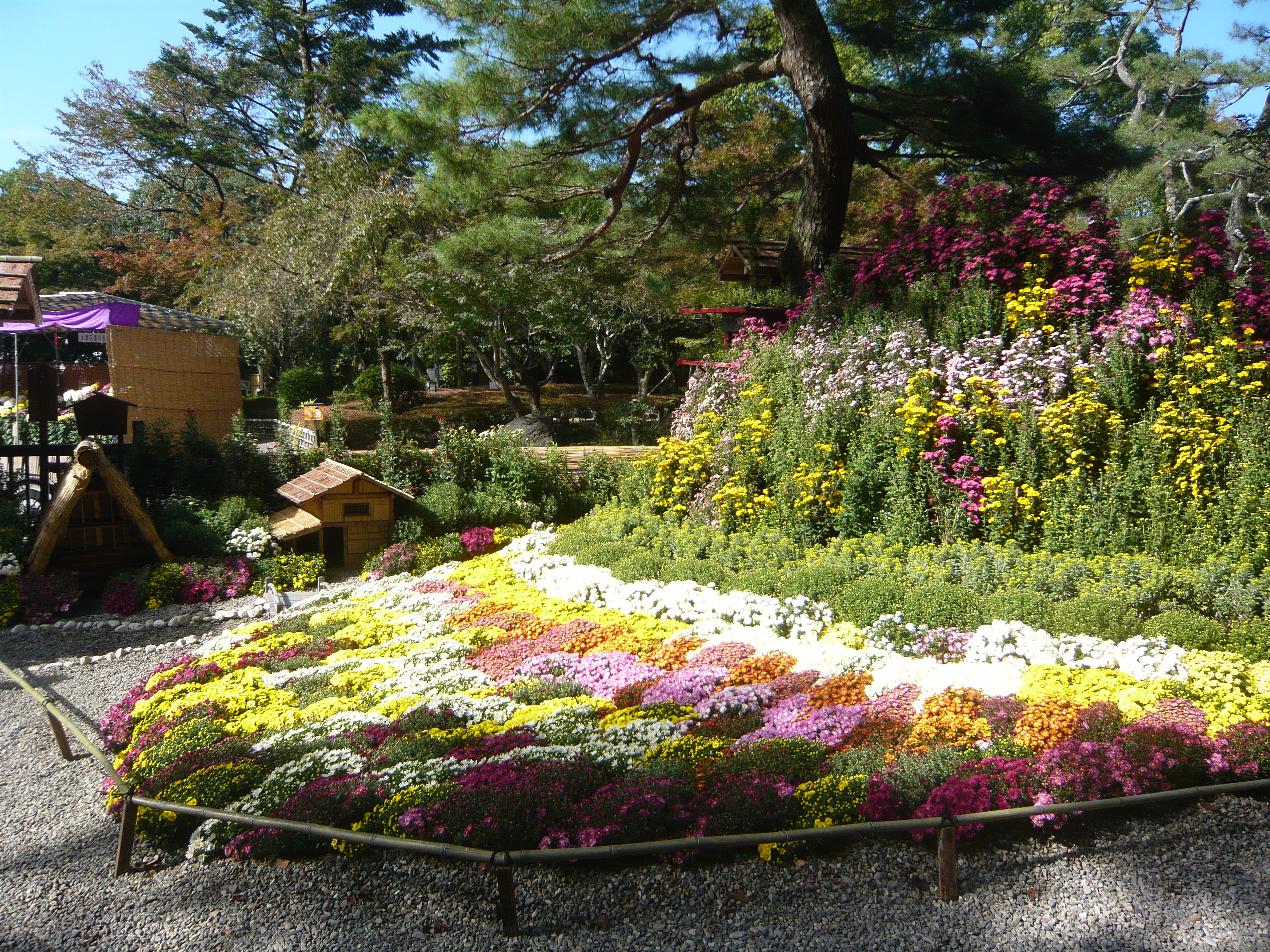 Japan Flower Festival And Flower Festival 09.jpg