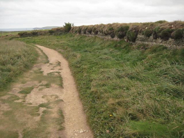 Coast path near Bedruthan Steps - geograph.org.uk - 1540409