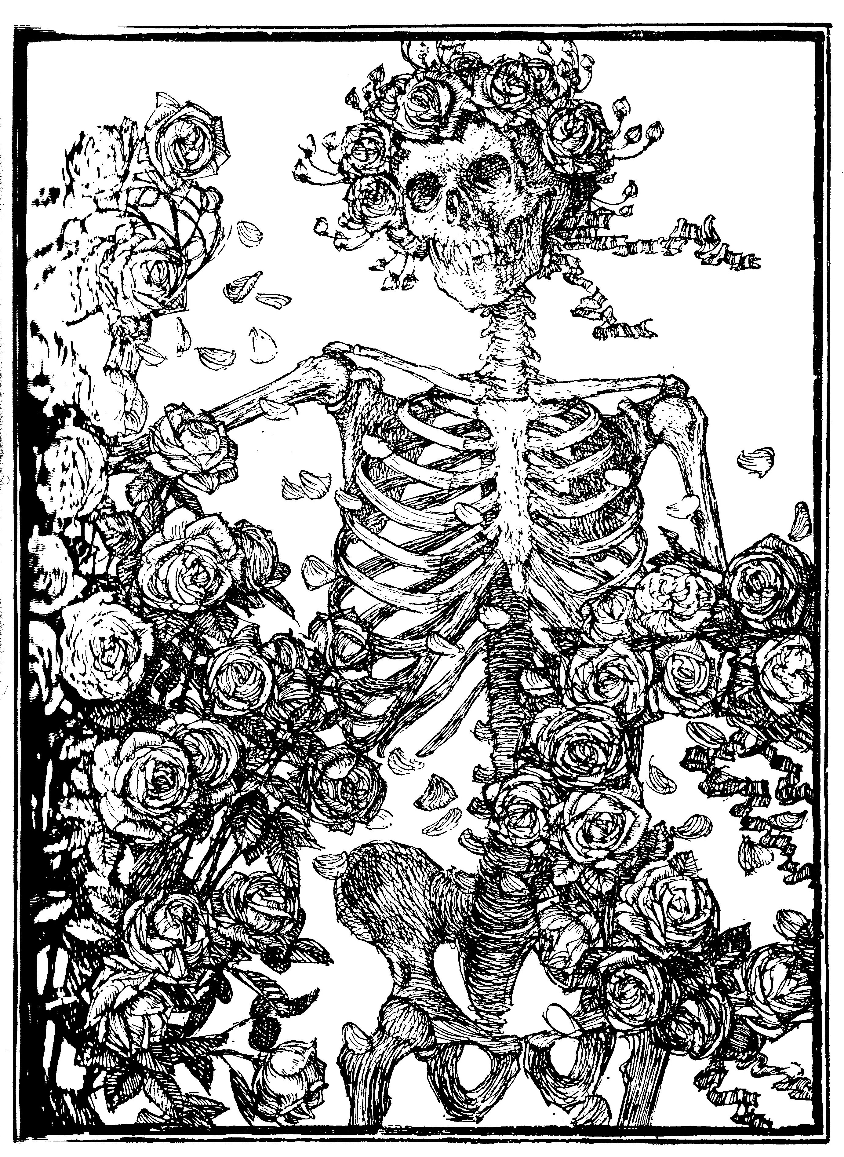 Image Result For Skull With Roses
