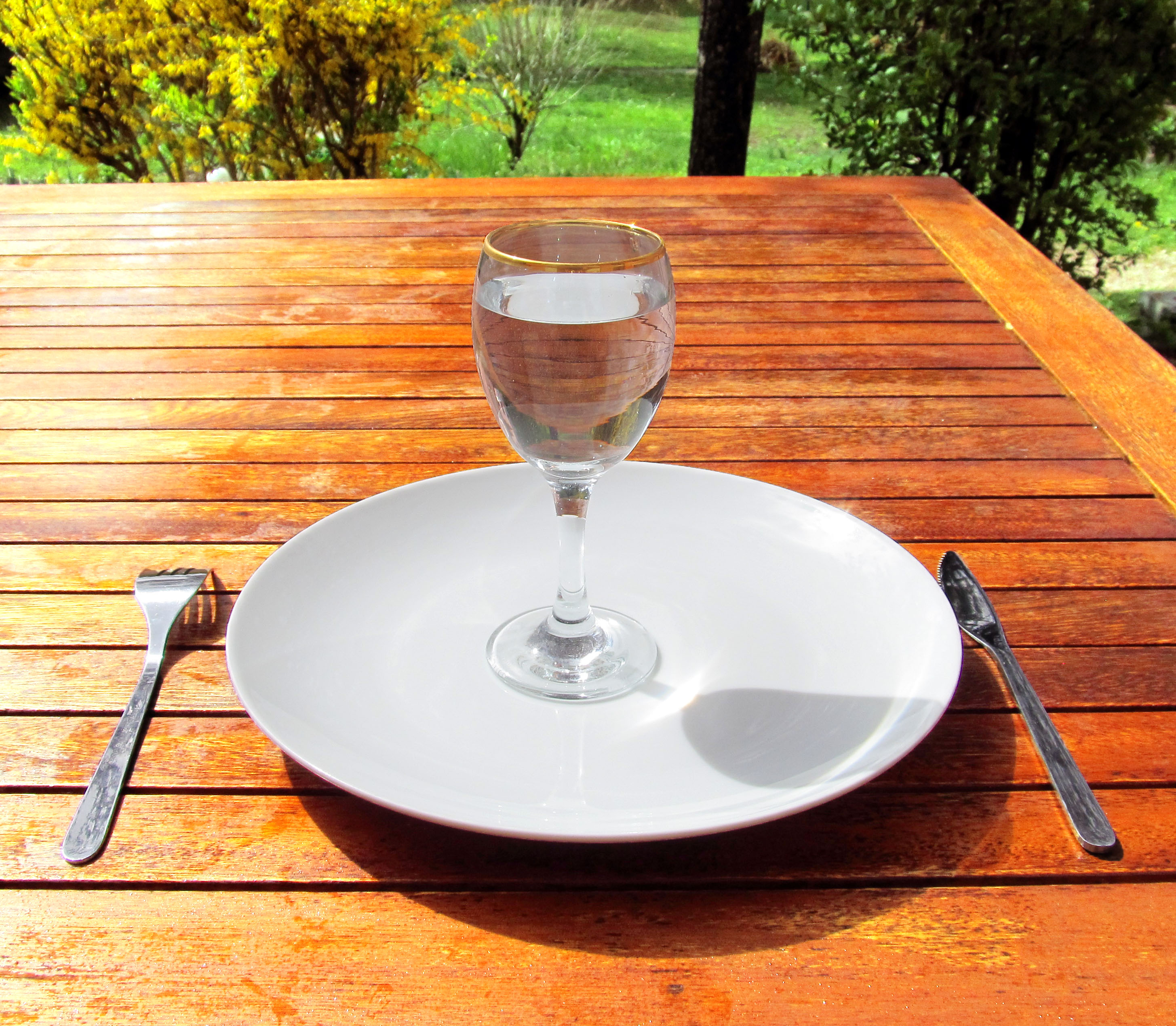 http://upload.wikimedia.org/wikipedia/commons/e/e5/Fasting_4-Fasting-a-glass-of-water-on-an-empty-plate.jpg