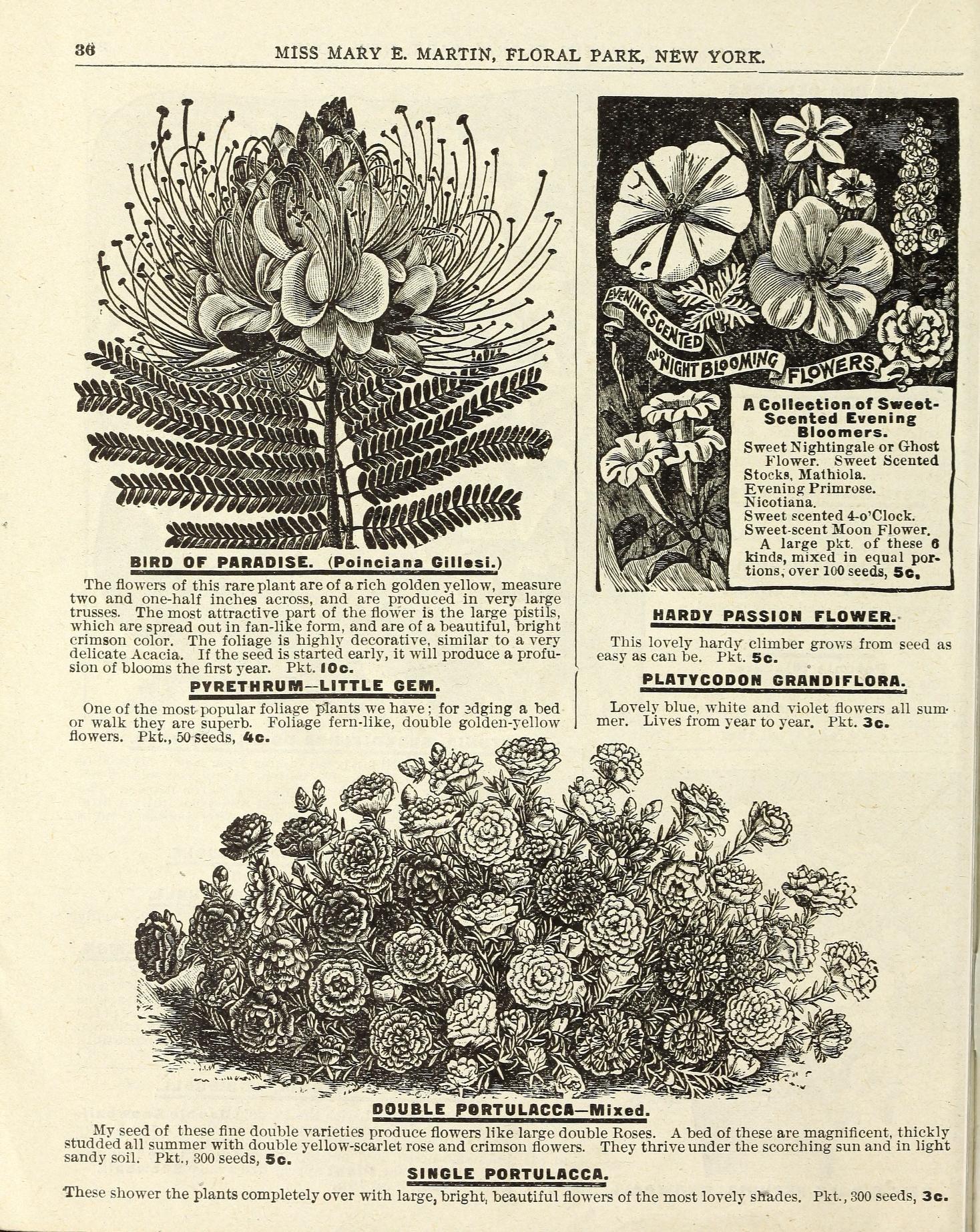 File Flowers For Springtime 16315407998 Jpg