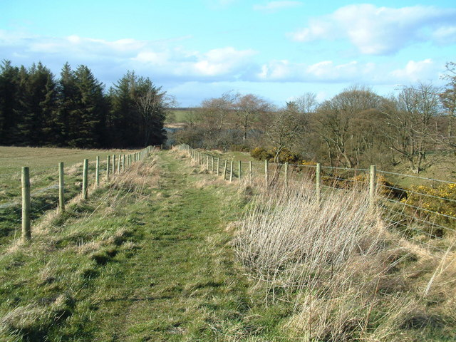 Footpath from Radernie - geograph.org.uk - 152836