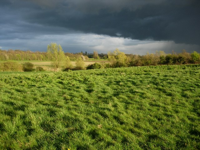Grantchester Meadows - geograph.org.uk - 778647