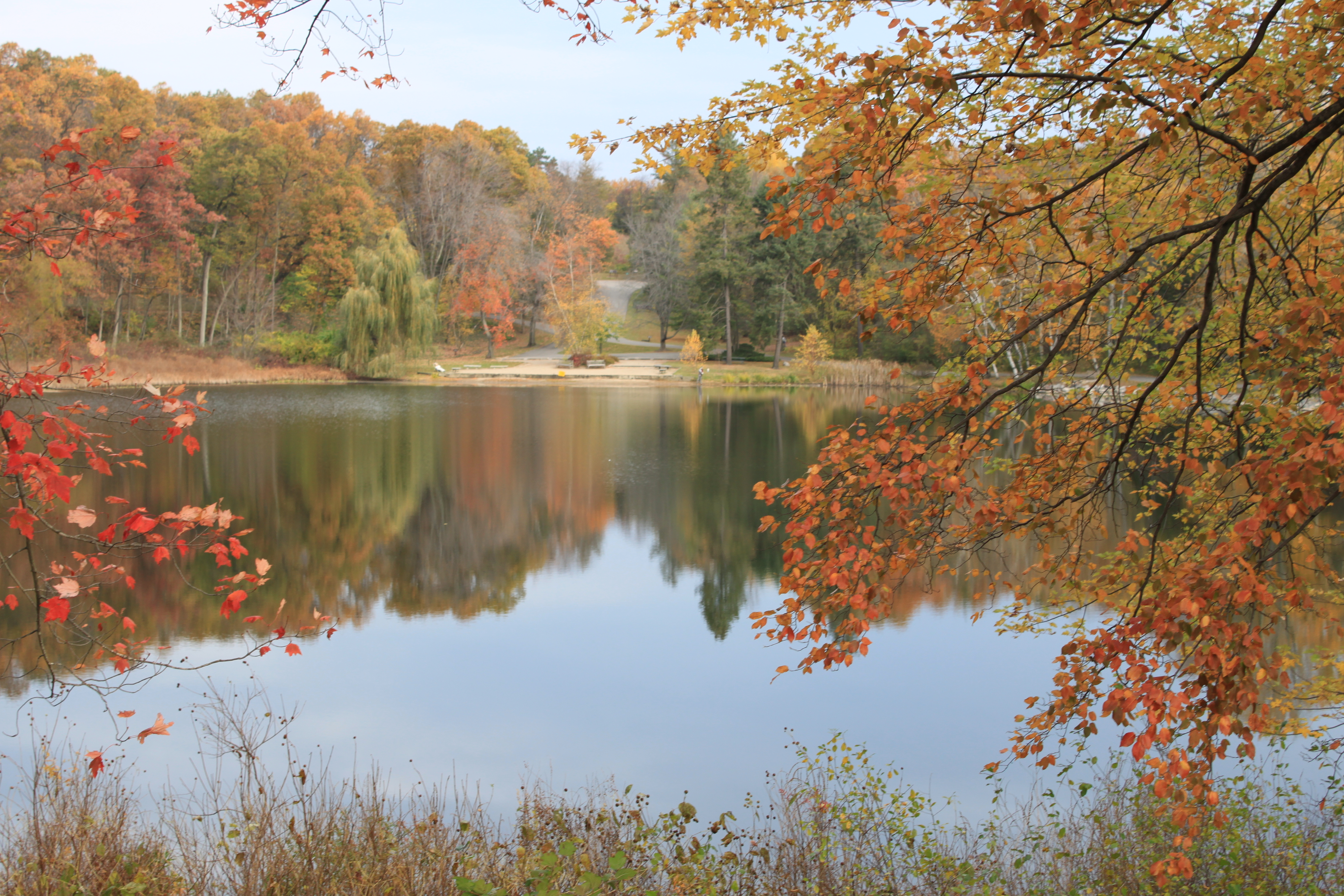 File:Hidden Lake in Hidden Lake Gardens Michigan.JPG - Wikimedia Commons