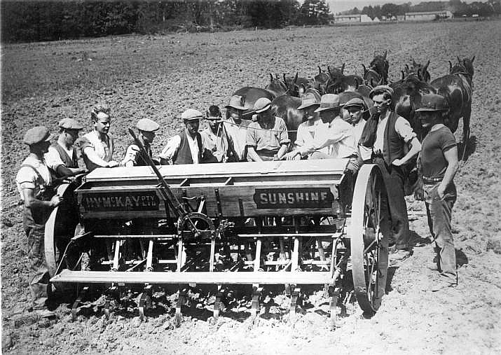 Seed Drill Wiktionary