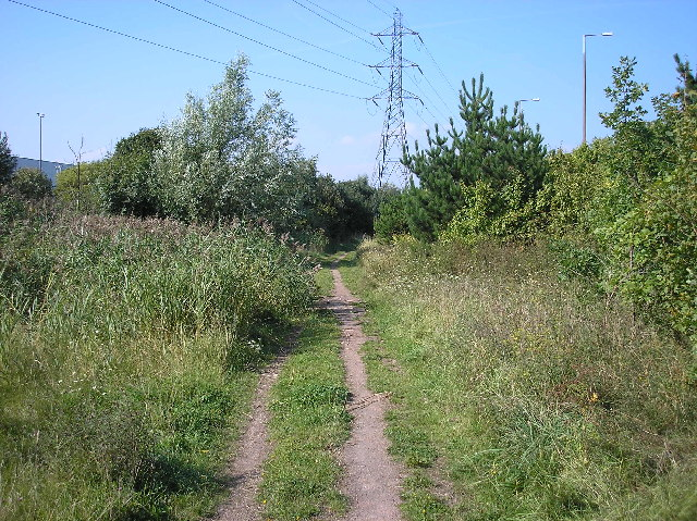 https://upload.wikimedia.org/wikipedia/commons/e/e5/Howardian_Nature_Reserve%2C_Cardiff._-_geograph.org.uk_-_48382.jpgHowardian Nature Reserve, Cardiff. One of the first examples of a statutory nature reserve established on a former domestic refuse site. Established in 1973 and declared a local nature reserve in 1991.