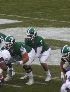 Brian Hoyer behind center