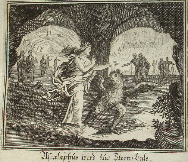 Ascalaphus is turned into an owl. Engraving by Johann Ulrich Krauß, 1690