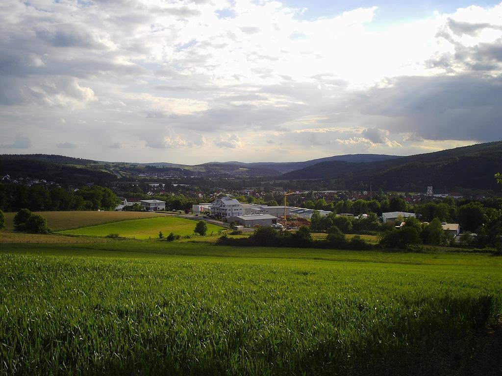Bad Soden (Kinzigtal) – Wikipedia