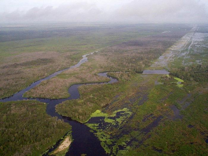 Everglades >> Restoration of the Everglades - Wikipedia