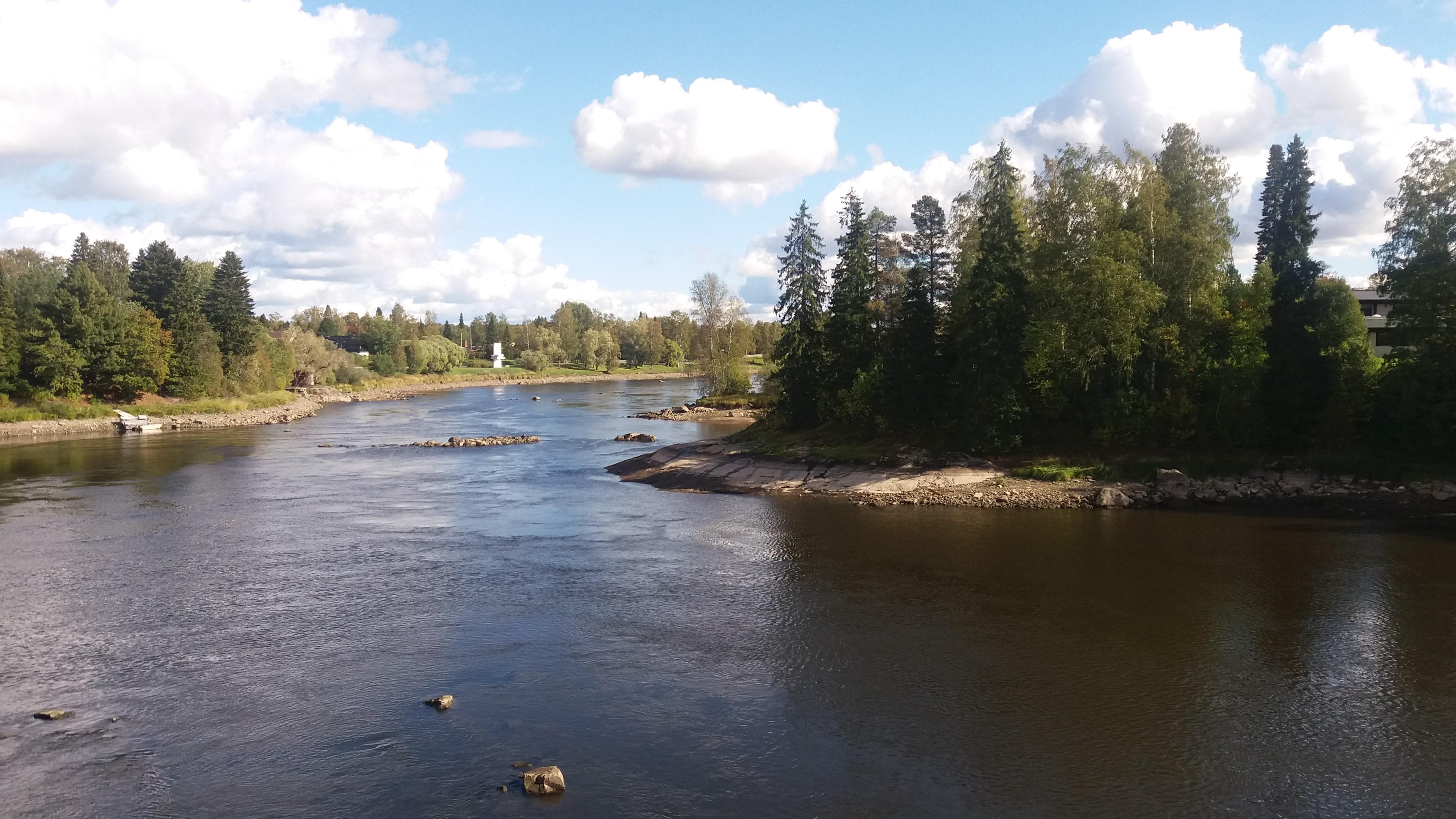 Kokemäenjoki Tulkkila (001).jpg