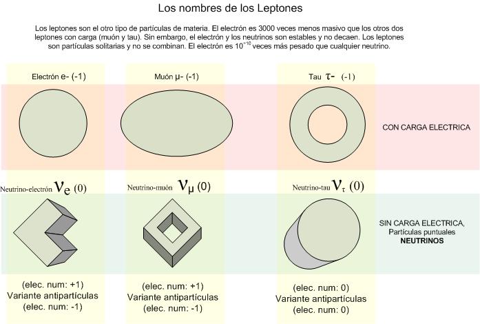 Resultado de imagen de Los leptones