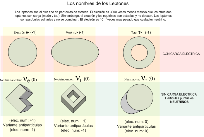 Leptón - Wikipedia, la enciclopedia libre