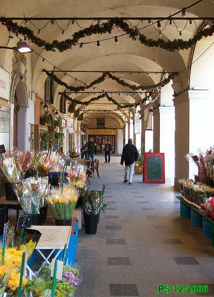 NIKAIA-Garibaldi-ArcadesN2W.jpg
