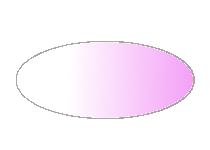 Figure 4. nanos gradient