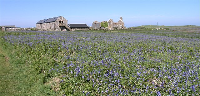 Old Farm, Skomer Island - geograph.org.uk - 1329640