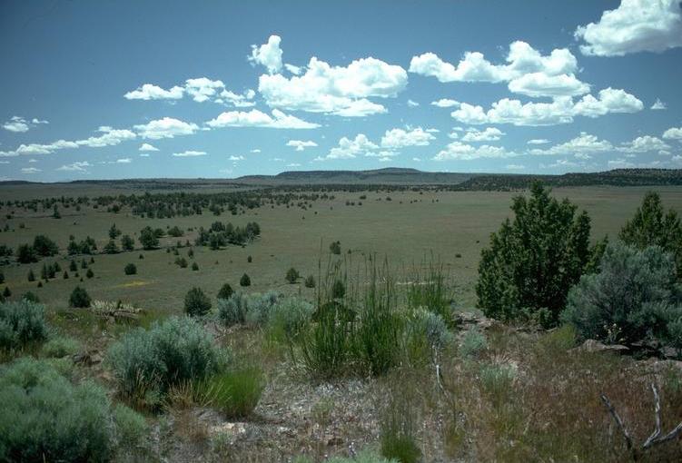 Oregon High Desert.jpg