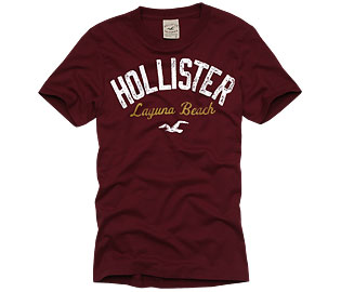 http://upload.wikimedia.org/wikipedia/commons/e/e5/Playera_hollister.jpg
