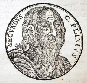 Plinius den Ældre - 1635