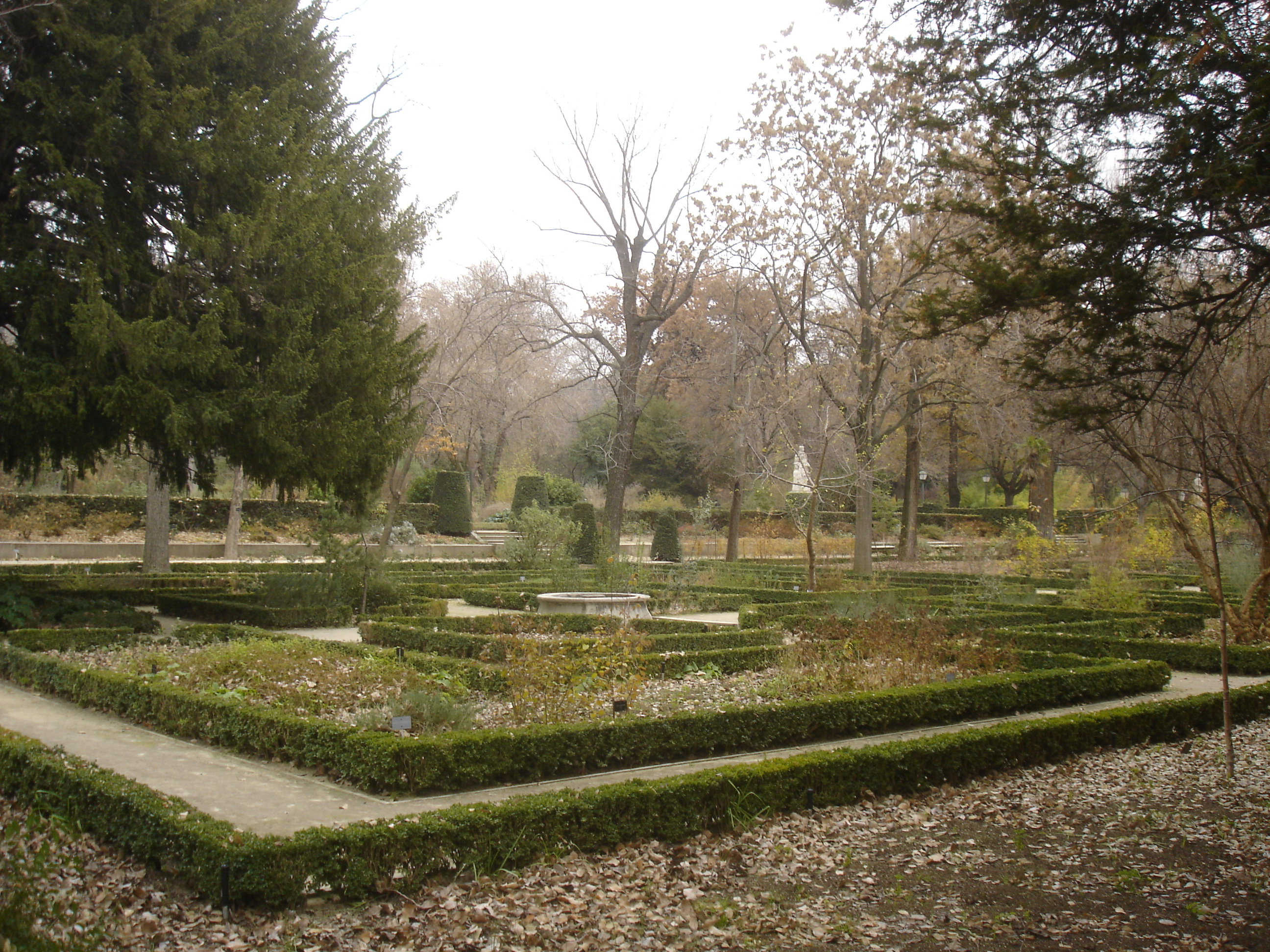 Heaven d a por madrid for Como ir al jardin botanico