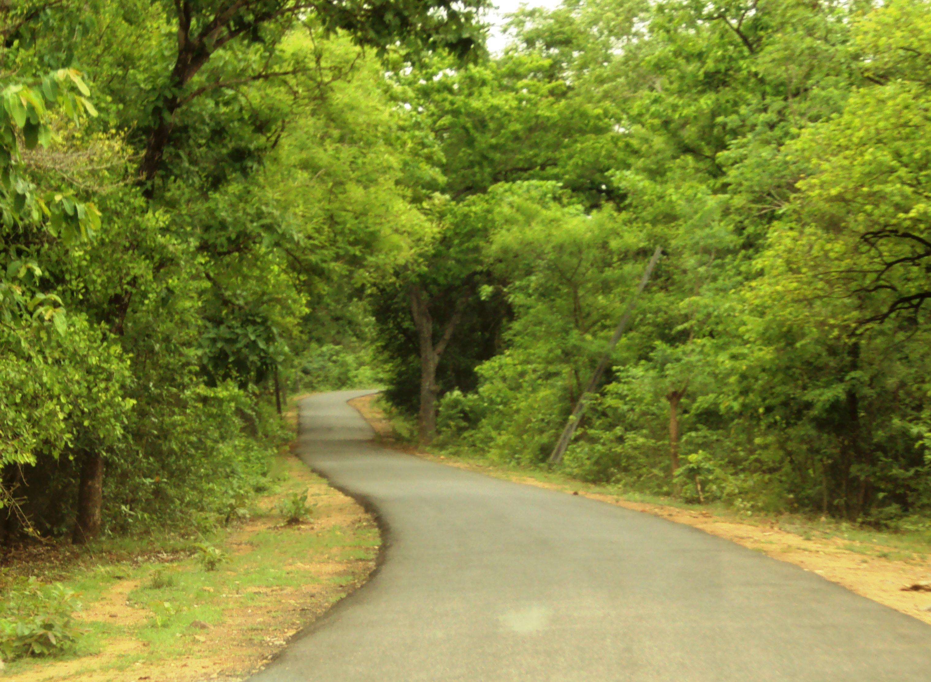 Khammam Roads