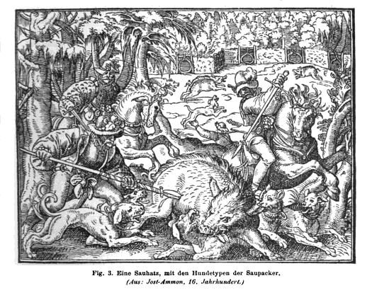 File:Saupacker aus 1582.png