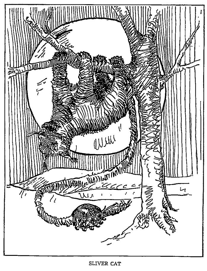 Illustration of an American mythical silvercat.