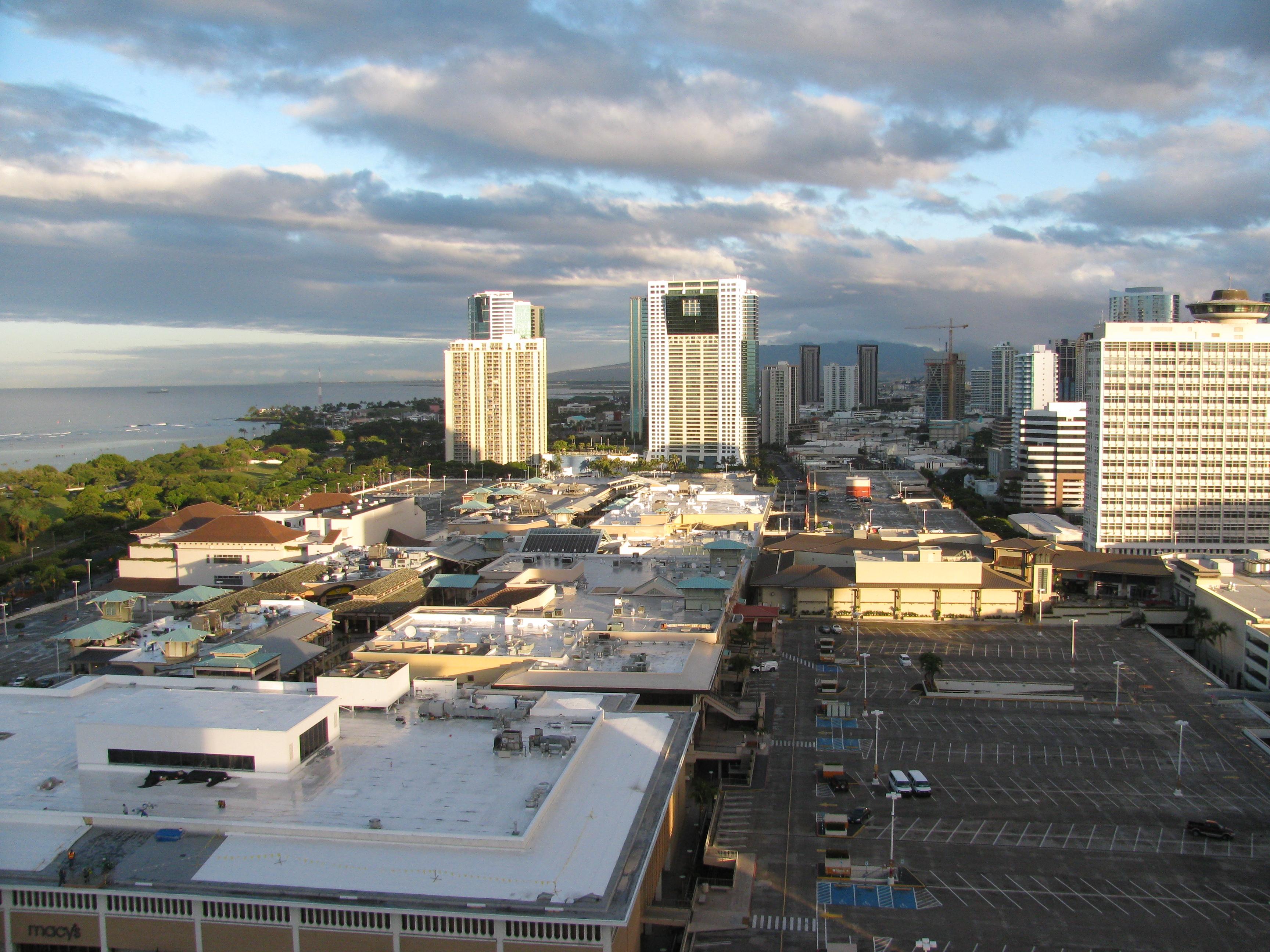 File Starr 100806 3607 Schefflera Actinophylla Habitat View Ala Moana Mall Roof Ala Moana Hotel Honolulu Oahu 24750900440 Jpg Wikimedia Commons