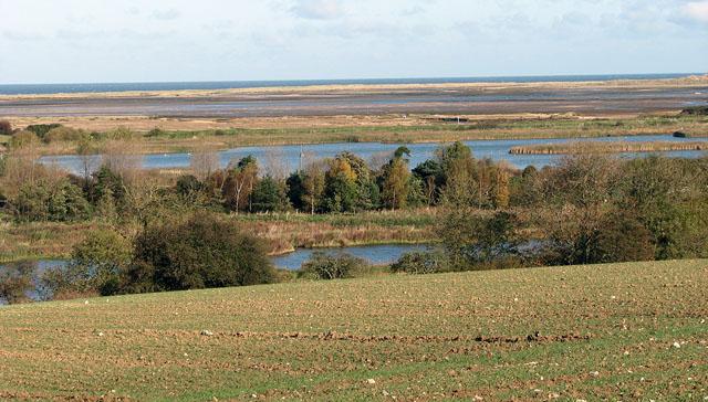 Stiffkey fen and saltmarshes beyond - geograph.org.uk - 1024622