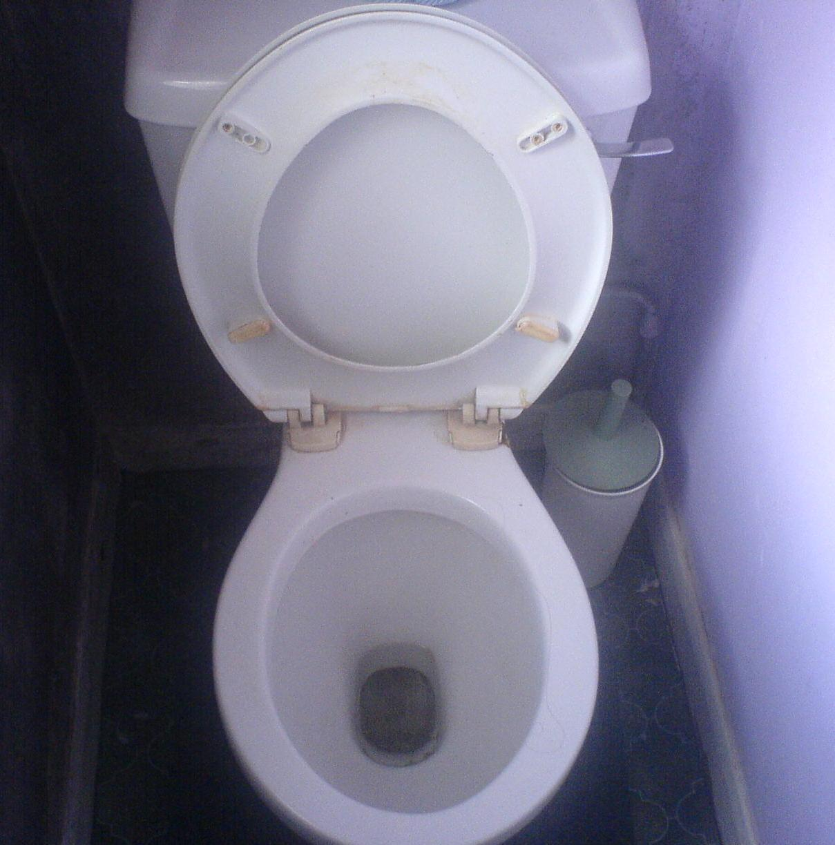 the toilet overview The humanure handbook, 3rd edition, foreign editions, how to use a humanure toilet - composting human waste, recycling human excrement, using a compost toilet.
