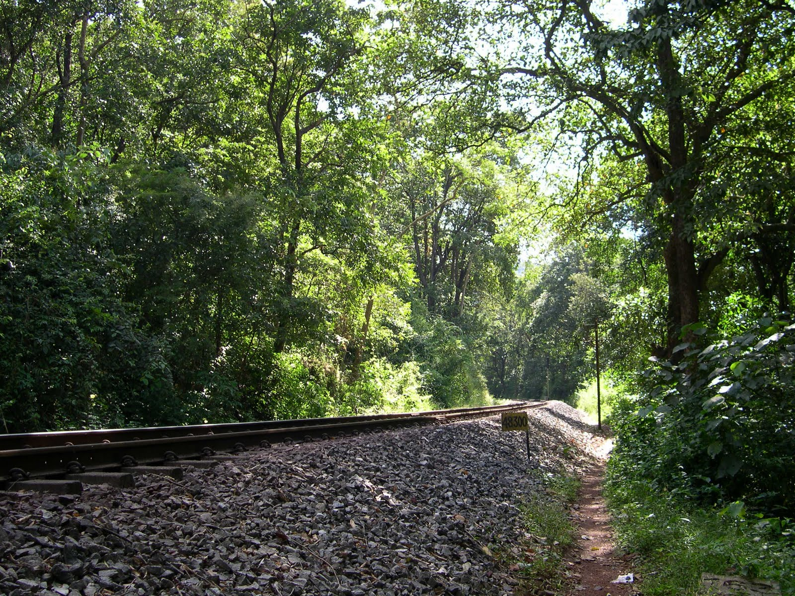 The Indian Railways track.