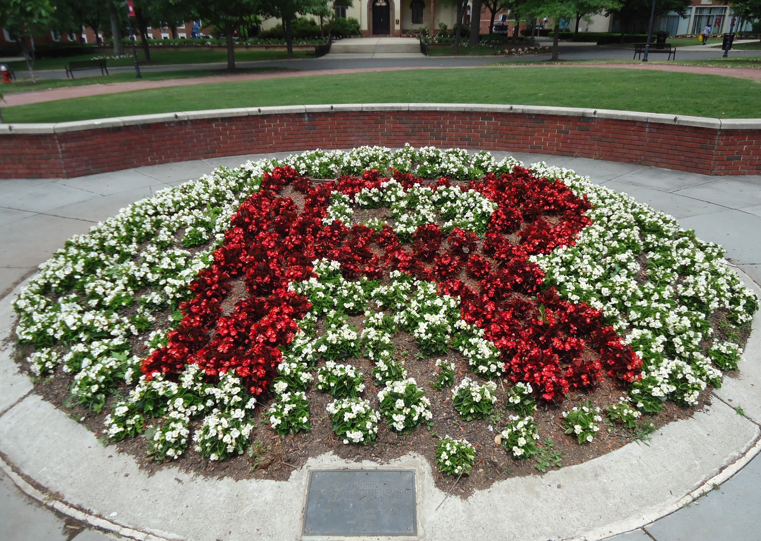 Fileuu rutgers university flowers form a giant r college avenue fileuu rutgers university flowers form a giant r college avenue campusg altavistaventures Choice Image