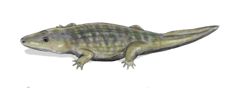 Kestrosaurus