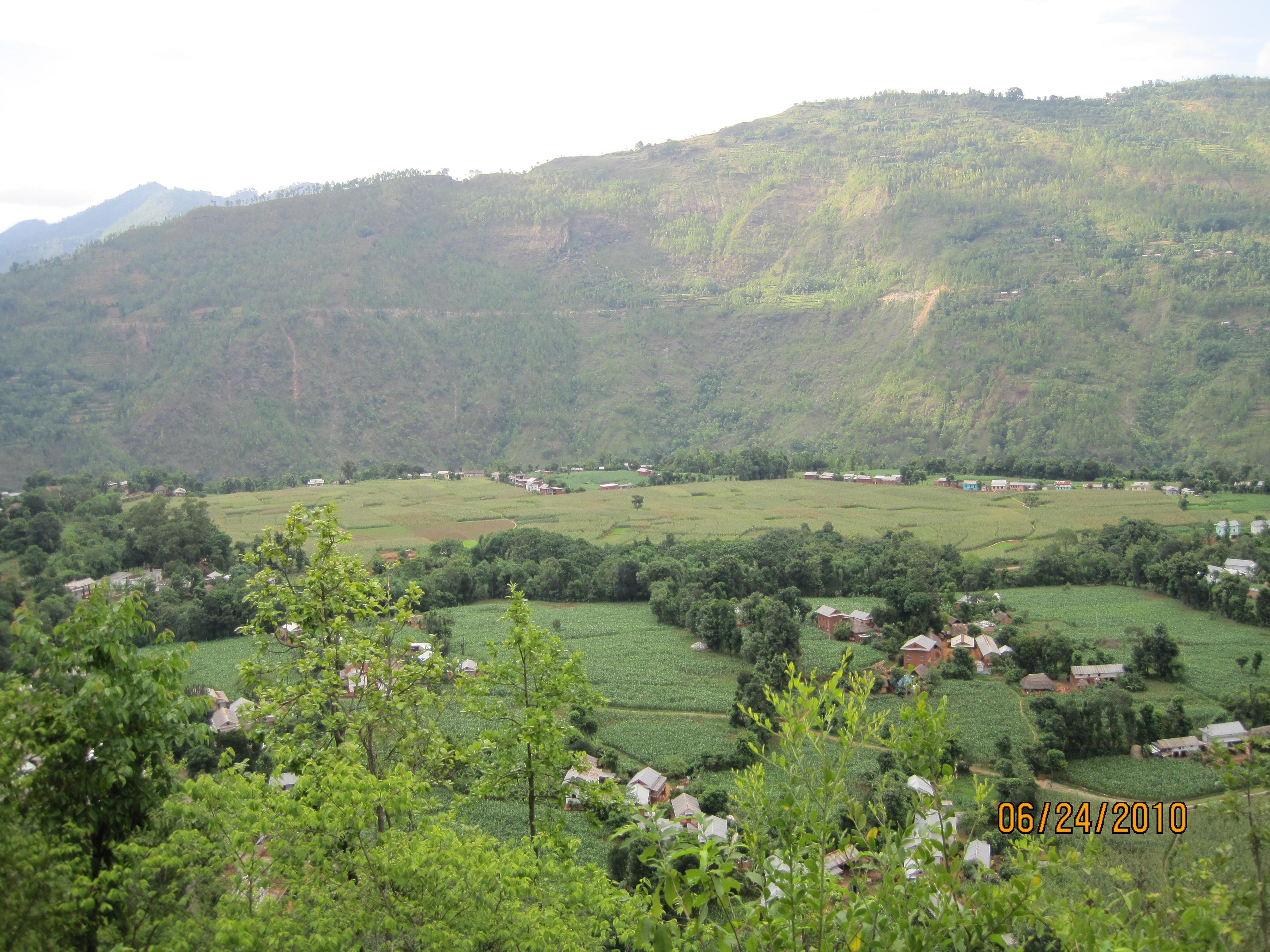 Palpa Nepal  city pictures gallery : Argali Palpa2 Wikipedia, the free encyclopedia
