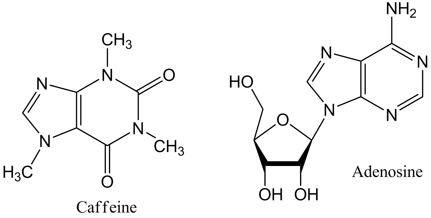 The chemical structure of adenosine vs. caffeine