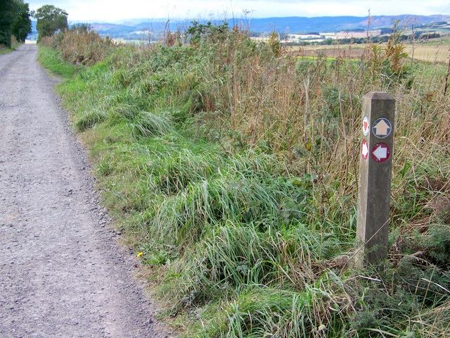 Cateran Trail above Blairgowrie - geograph.org.uk - 1533438