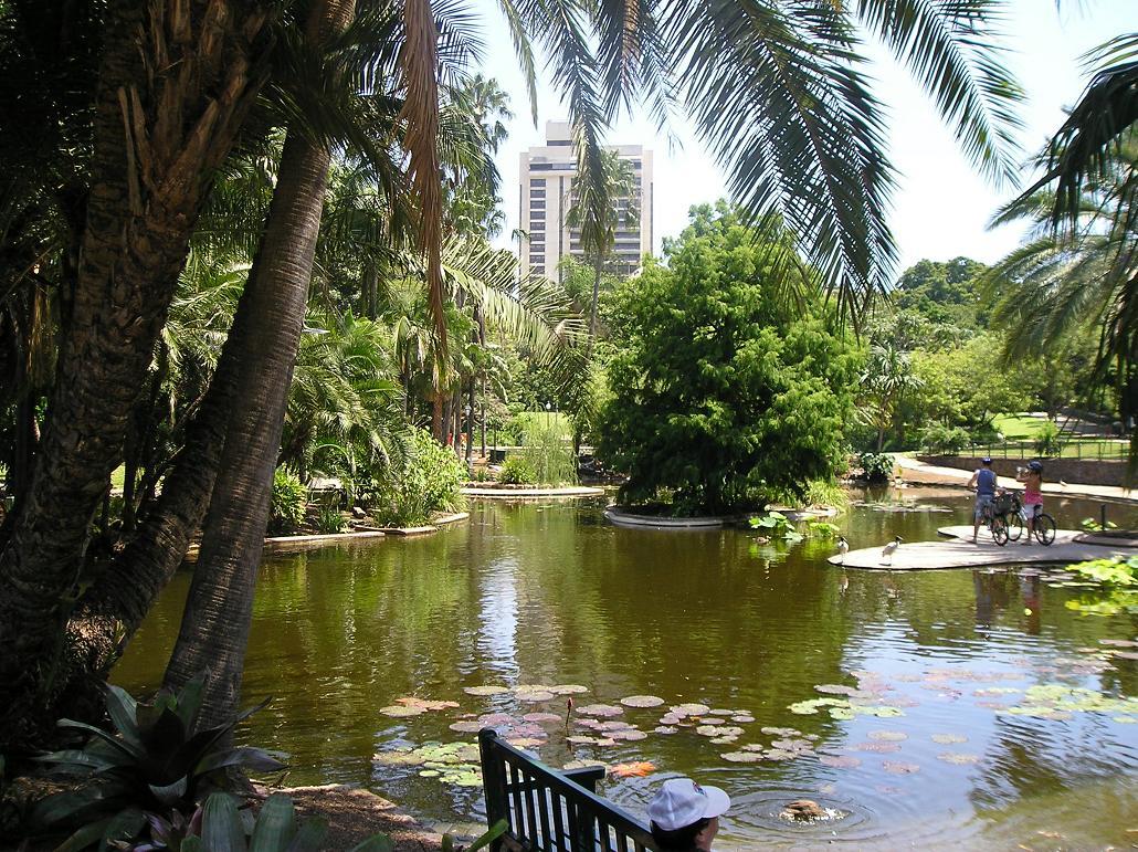 File City Botanic Gardens Duck Pond Jpg Wikimedia Commons