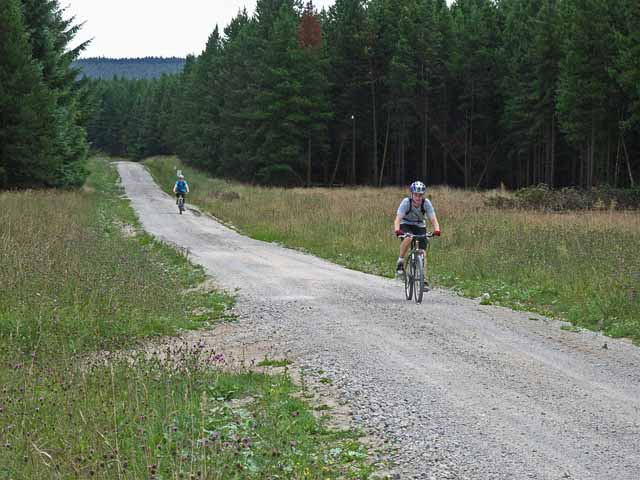 Cyclists in Langdale Forest - geograph.org.uk - 217950