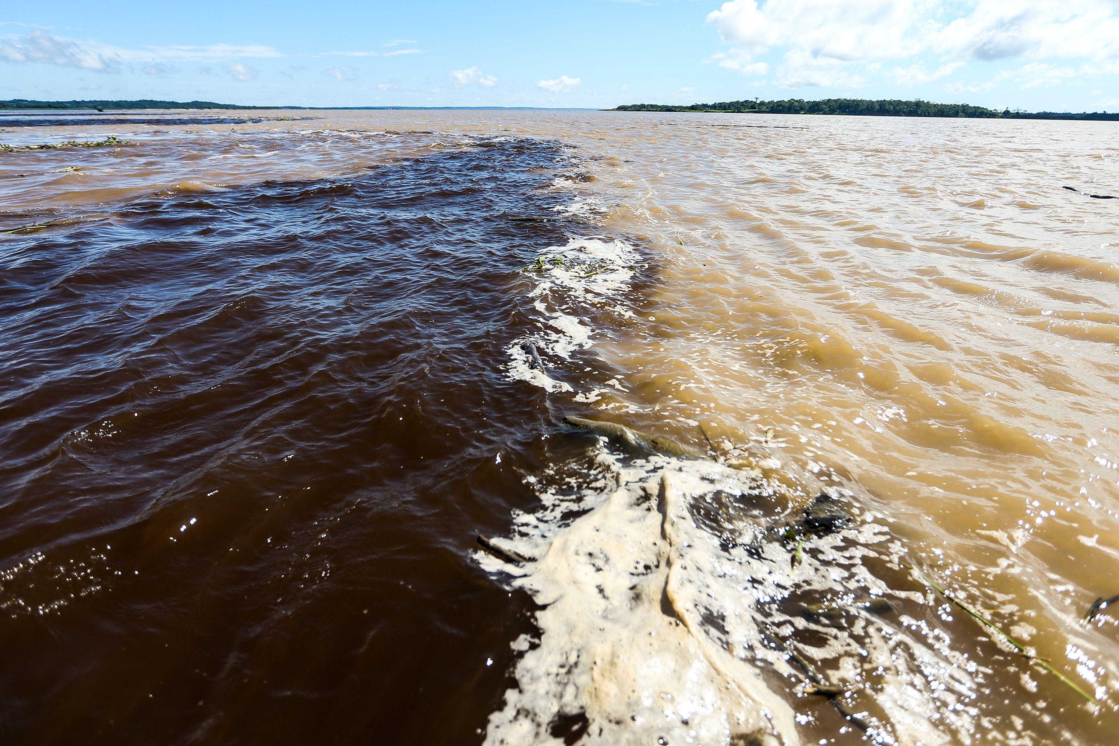 rio negro e solimoes download