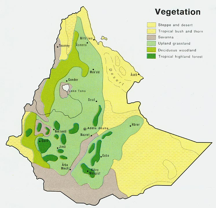 zero net déforestation